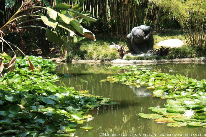 Huntington Botanical Gardens. San Marino, California