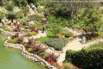 San Antonio Japanese Tea Garden. Texas