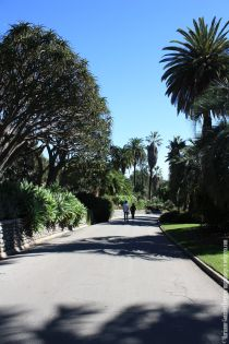 The Huntington Botanical Gardens. San marino, California.
