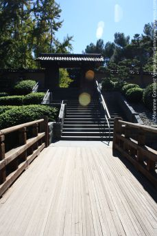 Huntington Botanical Gardens, San Marino, California