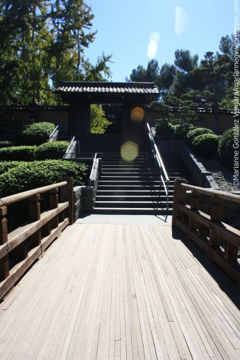 Huntington Botanical Gardens, San Marino, California
